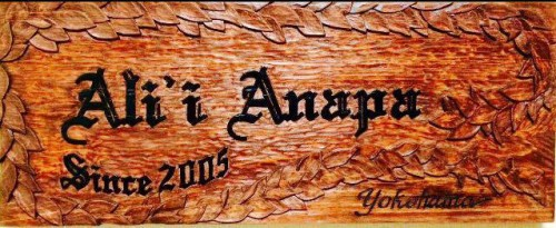 ali_logo